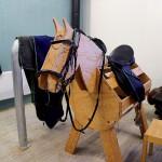 Här får eleverna öva på att sadla hästarna.