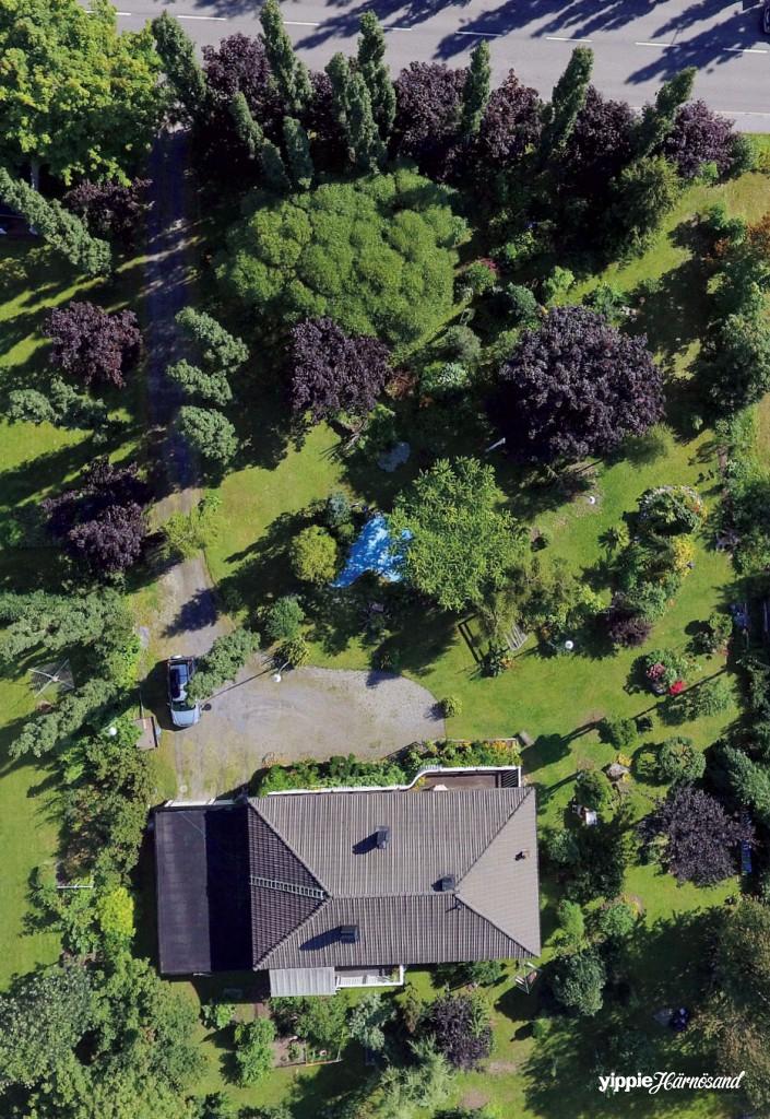 En översikt på trädgården