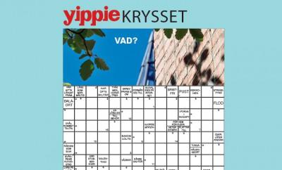 yippie_krysset