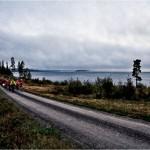 05.40. Gryning längs Norra sundet.