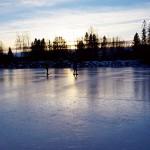 """""""Öjesjön är en omväxlande sjö och vi rundar fleraöar och åker in i olika vikar. Eftersom isen är så pass tjock kan vi åka rätt fritt."""""""