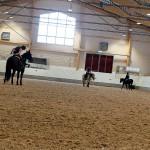 Idag är det hästhoppning på schemat.