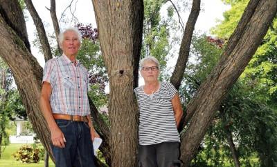 Trädkramarna på Ådalsvägen